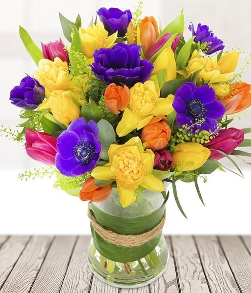 Daffodil Burst